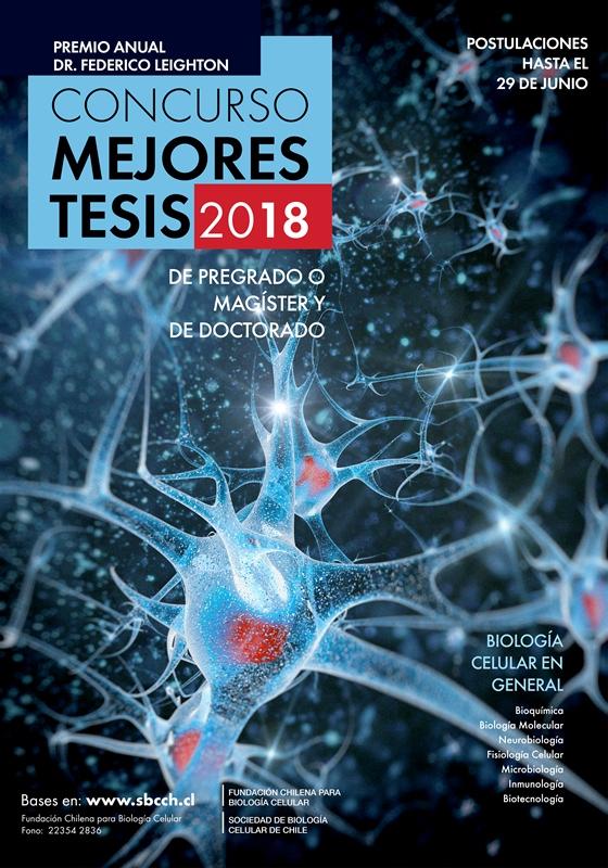 Afiche Concurso Mejores Tesis 2018